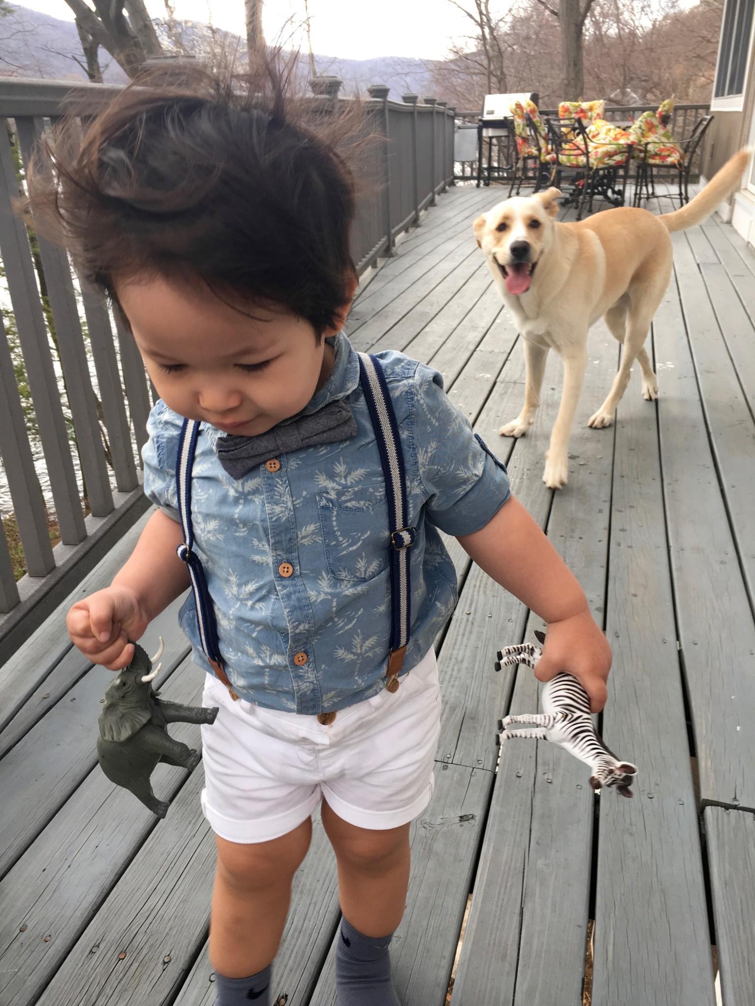 Zara Kids Palm Tree Shirt